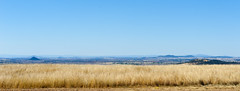 Liverpool Plains landscape