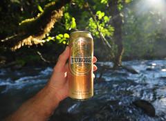 Pure Gold (Fish as art) Tags: beer britishcolumbia taste tuborg salmonrivers paulvecsei