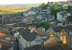 9671033046 bdaccd0877 m 2013 Bordeaux Images Photographs Chateau Owners Wine Food Life