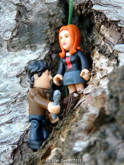The Dr & Amy Climbing a Tree to see whats around