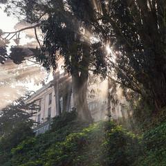 Alcatraz Light (Kevin MacLeod (unranged.com)) Tags: sanfrancisco california ca sunshine northerncalifornia nikon ruins prison bayarea alcatraz vee lightrays kevinmacleod d800e nikond800e unrangedcom vision:outdoor=0929 vision:sky=0633