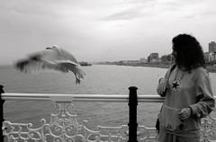 (nina.lichine1) Tags: ocean old uk trip bridge blackandwhite holiday cold bird london love water girl fly friend memories happiness away times