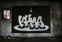 Kuma (carnagenyc) Tags: nyc newyork graffiti carnage kuma specialedition