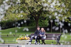 Faces of Ireland: Puppy love (Canadian Pacific) Tags: park county city ireland boy people dublin irish woman man love fountain girl bench centre central young romance teen lad co framing ststephensgreen ire republicof aimg2416
