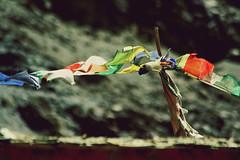 Prayer Flags of Rizong (Tathagata Journeys) Tags: trek monastery himalayas ladakh nunery rizong