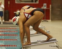 University of Arkansas Razorbacks vs Kansas and Vanderbilt Swimming and Diving (Garagewerks) Tags: woman college sport female swimming swim university all sony dive sigma diving vanderbilt kansas arkansas vs athlete f28 razorbacks 70200mm 2014 views500 views100 views200 views400 views300 slta77v vision:outdoor=0731