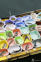 Fish stall (noobographer) Tags: ocean blue red sea food fish color colour green water yellow hongkong boat bucket colorful asia market live stall fresh container plastic catch colourful caught saikung cruel
