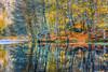 Yedigoller, Turkey (Nejdet Duzen) Tags: trip travel autumn lake reflection nature forest turkey türkiye bolu göl yansıma orman turkei sonbahar seyahat doğa yedigöller ilobsterit