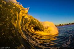 IMG_4531 (randyreyes__) Tags: ocean california beach water canon surf waves surfer tube wave surfing fisheye tokina socal southerncalifornia beachs liquid bodyboarding h20 bodyboard hcw toob bodyboarder waveporn canon7d hcwhousing tokina1017mmfishey
