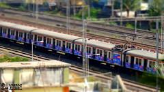 miniature train (akshaypatil™ ® photography) Tags: camera train miniature photo model sony emu local mumbai tiltshift mrvc hx50v