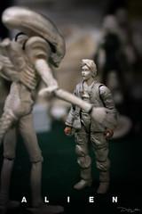 ALIEN234 (sith_fire30) Tags: art scott dallas allen action alien aliens beast custom lambert figures dayton sculpting facehugger ridley xenomorph nostromo chestburster sithfire30