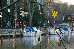 362/365 - Allington Lock (Spannarama) Tags: uk tree reflections river boats kent december branches 365 twigs maidstone decorated trinkets 2014 bejewelled rivermedway allington allingtonlock