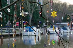 362/365 - Allington Lock (Spannarama) Tags: uk tree reflections river boats kent december branches 365 twigs maidstone decorated trinkets 2014 bejewelled rivermedway allington allingtonlock