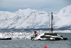 The docks in Oldervik, Troms. The Lyngen Alps in the background.. (w.aase) Tags: ocean seagulls docks lyngenalps lyngsalpan