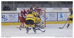 141230_Torino Bulls - S.B. Blazers_04