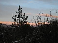 Les coteaux de Fa sous la neige [Fa / France] (Robinson Voyages) Tags: aude fa février 2015