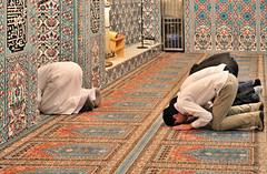 301112_078   Muslim prayer (the_apex_archive) Tags: vienna wien religious austria österreich muslim islam prayer mosque apex muslims islamic iman mihrab moslem gebet moschee moslems supplication gläubige muslime muslimisch islamisch gebetsnische gläubig gebetszeiten muslimen gebetsrichtung 301112