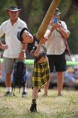 (Paul J's) Tags: boy kilt games highland toss caber turakina