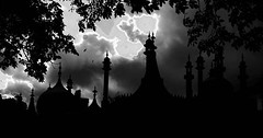 Everyone has their own perceptions, some... (experien) Tags: light sea blackandwhite black tree beauty weather clouds dark happy twilight brighton hove awesome horizon dome pavilion bandstand brightonbeach cloudporn tbt photooftheday goodolddays brightonpavilion brightonandhove skylovers visitengland visitbrighton summer2012 instamood uploaded:by=flickstagram instagram:photo=1241487838951650802254222956 instagram:venuename=royalpavilion instagram:venue=276743652