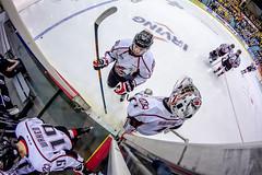 LHJMQ ROU vs SHA (WeGseB) Tags: game ice hockey fan goal stick puck playoff lhjmq goaler