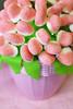 L'umorismo è lo zucchero della vita (illyphoto) Tags: dolce dolci caramelle caramella illyphoto photoilariaprovenzi