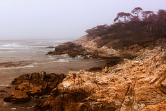California Dreamin' (Notkalvin) Tags: ocean california beach water fog rocks waves outdoor shoreline rocky shore westcoast mikekline notkalvin notkalvinphotography