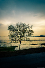 SSS_3142-Edit.jpg (S.S82) Tags: road summer india lake mountains tree nature rain fence landscape evening cloudy hill overcast trips lonely murky bhopal upperlake in madhyapradesh vanvihar ss82