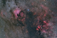 Cygnus (James Shimoji Photography) Tags: nikon space astro nebula astrophotography northamerica sadr cygnus perican aposonnar astrometrydotnet:status=solved d810a astrometrydotnet:id=nova1559391