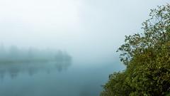 Bright Fog at the Bend (ken.krach (kjkmep)) Tags: grandtetonnationalpark