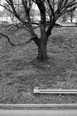 XT1-05-07-15-336-2 (a.cadore) Tags: nyc newyorkcity blackandwhite bw zeiss landscape uptown fujifilm riversidepark uws carlzeiss xt1 biogont2828 zeissbiogon28mmf28 fujifilmxt1