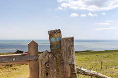 where even fence posts are happy to be near the sea (penwren) Tags: ocean uk england sign fence sussex post southcoast southdowns hff sdnp fencefriday