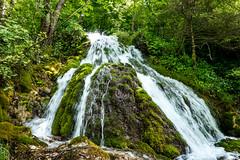 "Refreshing Green (""louisheublein"") Tags: trees wild green nature water forest landscape waterfall wasser wasserfall fliesen grn landschaft bume mossy moos"