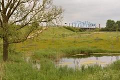 Our bridge of sighs - off the road (neute@85) Tags: brugderzuchten sluiskil n61 kanaalterneuzengent