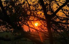 Sunset over Gaza (TeamPalestina) Tags: sunset reflection heritage beautiful sunrise canon landscape hope landscapes photo am amazing nice nikon photographer natural sweet live palestine innocent comfort blockade freepalestine palestinian occupation
