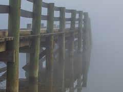 Foggy morning (Allan Lance) Tags: fog landscape bordertown australianlandscape southaustralia ajl