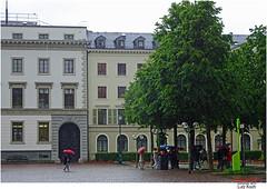 Regen / WI#6 of 6 (Lutz Koch) Tags: wiesbaden landtag hessen regen schirm umbrella tree baum elkaypics lutzkoch sonydschx90 hesse germany rain
