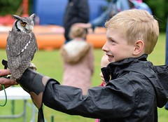 A Boy and His Owl - Fir Tree Falconry