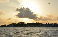 Belize City (zug55) Tags: belize caribbean belizecity centralamerica caribbeansea belice americacentral britishhonduras