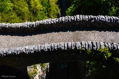 _DSC3516 (allabar8769) Tags: ro puente agua huesca montaa vegetacin aragn candeaisclo