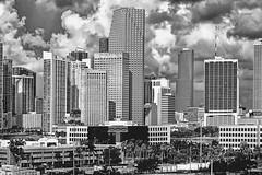 View of downtown Miami, Florida, U.S.A. / the Magic City (Jorge Marco Molina) Tags: urban usa skyline skyscraper cosmopolitan downtown realestate metro florida miami highrise residential metropolitan condominium density southflorida centralbusinessdistrict sunshinestate commercialproperty miamidadecounty