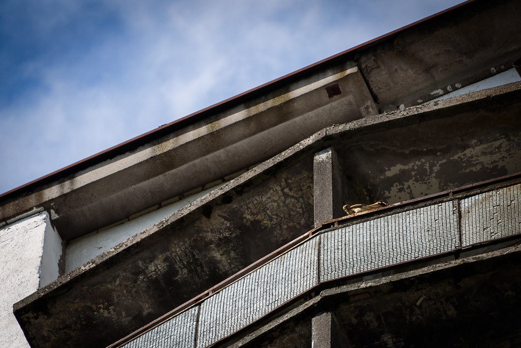 The World S Best Photos Of Apartment And Pripyat Flickr Hive Mind