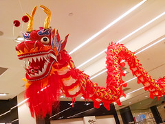 Chinese Paper Dragon Art Display (shaire productions) Tags: chinesenewyear chinese asian paper sculpture mache folkart handmade creation creative festive festival lunarnewyear seasonal culture cultural japanese oriental image picture photo photograph photography orient asia red orange vibrant dragon animal