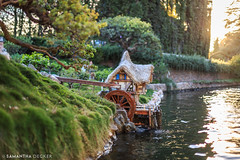 The Old Mill (Samantha Decker) Tags: california ca disneyland socal anaheim themepark fantasyland storybooklandcanalboats canoneos6d samanthadecker socal16