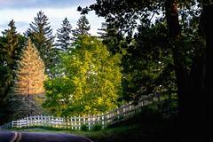 (rickhanger) Tags: road fence landscape dawn nationalpark daybreak roadway cuyahogavalleynationalpark fenceline cvnp