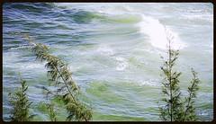 Ondas (o.dirce) Tags: nature mar natureza ondas espuma odirce