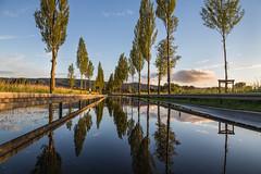 Road to reflection (Sebo23) Tags: reflections reflektionen moos allee hochwasser radolfzell spiegelungen wasser bodensee bume trees canon6d canon24704l abendstimmung abendlicht