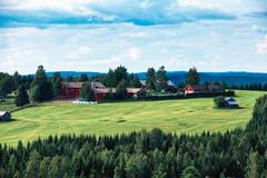 Kotaharjun nkalatorni (Tuomo Lindfors) Tags: field suomi finland farm dxo nktorni observationtower pelto maatila colorefexpro nkalatorni filmpack niksoftware sonkajrvi kotaharju kotaharjunnkalatorni