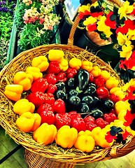 German Fruit's (ANBerlin) Tags: red black color berlin rot apple vegetables yellow fruit germany pepper deutschland basket eggplant gelb aubergine farbe paprika schwarz hdr extraordinary prenzlauerberg gemse korb iphone frchte obst iphotography anb030 iphonography ausergewhnlich iphone6s 6splus