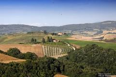 20160704_crete_senesi_siena_tuscany_8899 (isogood) Tags: italy landscapes horizon country scenic tuscany crete siena cretesenesi asciano senesi
