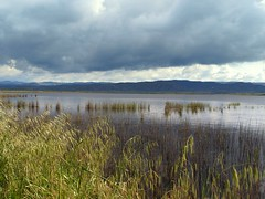Laguna de Pitillas 2 (Asun Idoate) Tags: landscapes waterscapes nafarroa ringexcellence